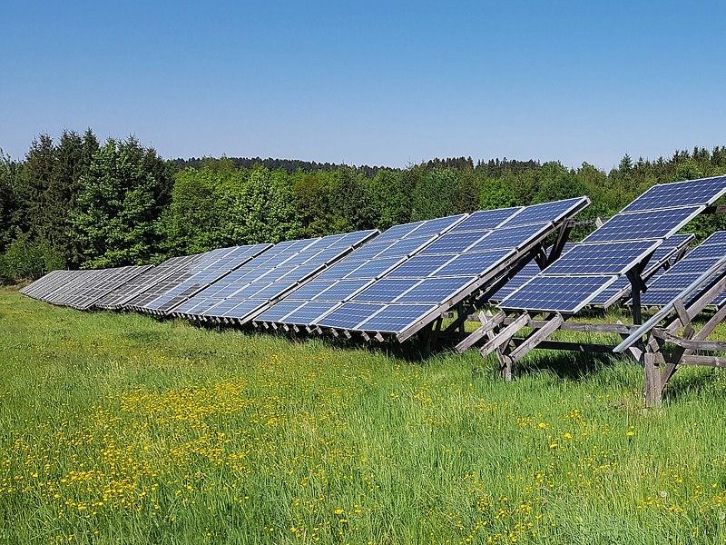 Solarparks sind ein Gewinn für die Biodiversität