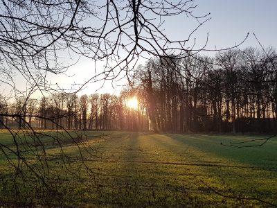 Sonne für Solarheizungen