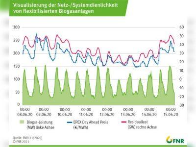 Biogas-Stromeinspeisung